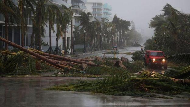 Bão Irma trút cơn thịnh nộ xuống Florida - Ảnh 3.