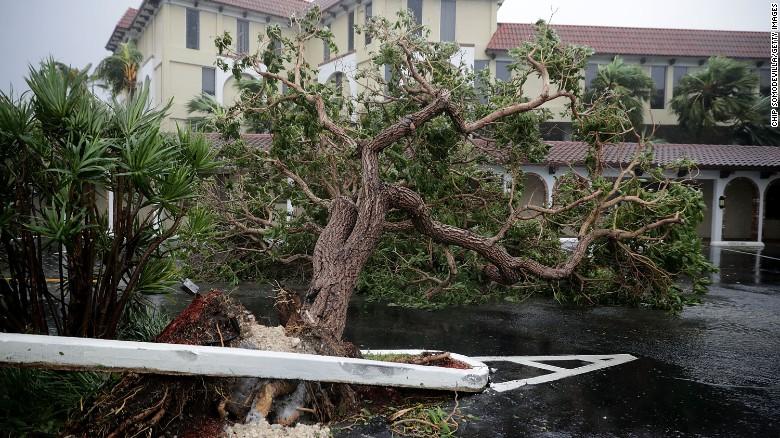 Bão Irma trút cơn thịnh nộ xuống Florida - Ảnh 7.