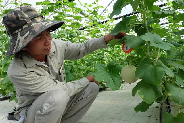 Học thật cao để về làm nông thật giỏi
