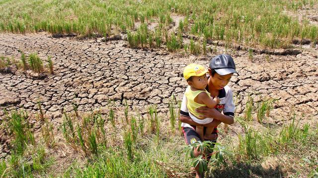 Tái cơ cấu nông nghiệp đừng bỏ quên thân phận nông dân - Ảnh 1.