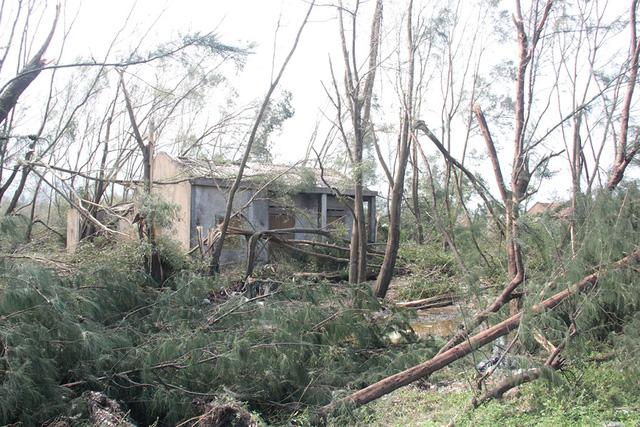 Xứ biển Kỳ Anh vẫn còn tan hoang sau bão - ảnh 5