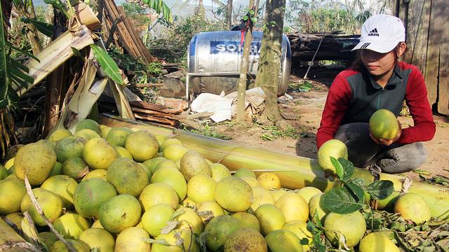 Hà Tĩnh thiệt hại hơn 6.000 tỉ đồng do bão số 10 - Ảnh 2.