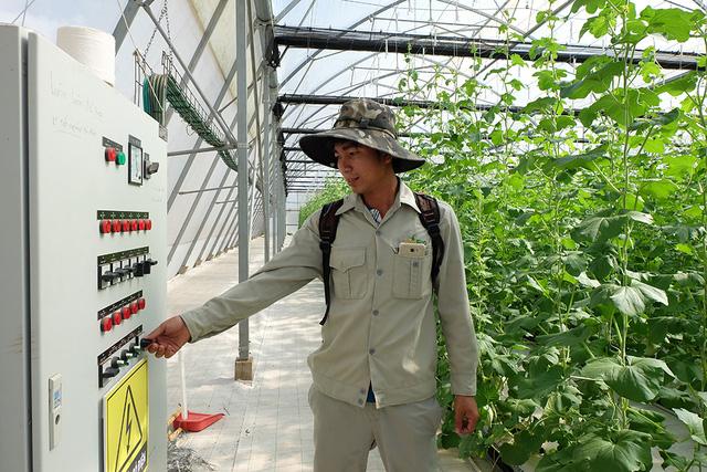 Học thật cao để về làm nông thật giỏi - Ảnh 2.
