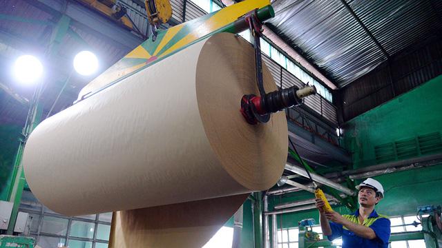 Trung Quốc khát giấy, gom sạch giấy cuộn từ Việt Nam - Ảnh 1.