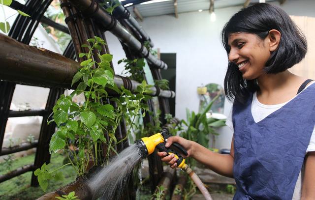 Nhà rau bằng tre và cỏ tranh giữa Sài Gòn của cô gái Ấn - ảnh 2
