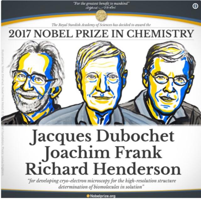 Công trình đoạt Nobel Hóa học giúp mục sở thị virus Zika - Ảnh 1.