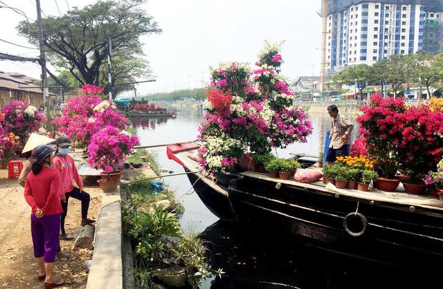 Dân Sài Gòn đủ chợ hoa để chưng tết - Ảnh 1.