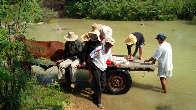 Sau tết người làng ra sông Dinh điểm danh - Ảnh 1.