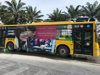 Miễn phí 2 tuyến buýt vào sân bay Tân Sơn Nhất dịp Tết