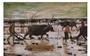 Ngắm những thân thương nghề nông trong tranh của họa sĩ nổi tiếng