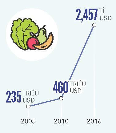 Xuất khẩu quả - rau - hoa hướng tới mục tiêu 10 tỉ USD/năm - Ảnh 12.