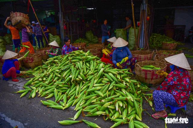 Tấp nập kẻ mua người bán tại chợ bắp lớn nhất Sài Gòn - Ảnh 10.