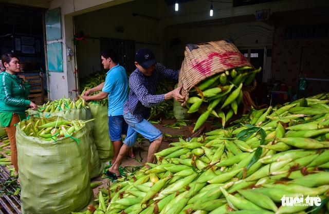 Tấp nập kẻ mua người bán tại chợ bắp lớn nhất Sài Gòn - Ảnh 15.