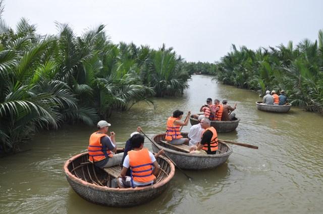 Quảng Nam đầu tư 25,5 tỷ đồng phục hồi rừng dừa nước - Ảnh 1.