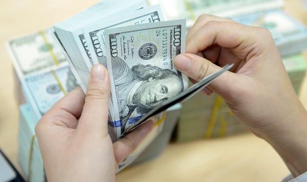 Ngân hàng Nhà nước yêu cầu thực hiện tốt huy động vốn bằng ngoại tệ - Ảnh 1.