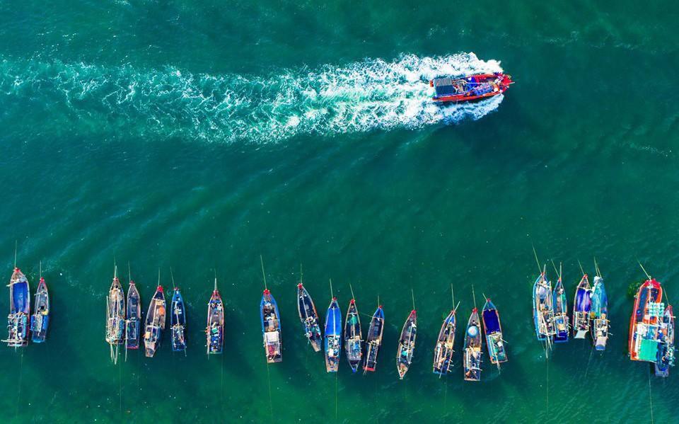 Ngắm 'rừng vàng biển bạc' Việt Nam tại Phú Quốc