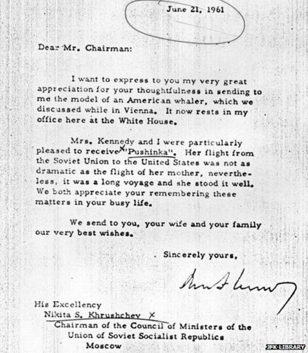60 năm trước, chó Laika bay vào vũ trụ - Ảnh 4.