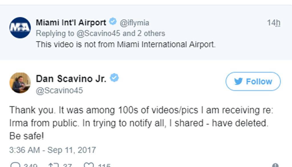 Giám đốc mạng xã hội của Donald Trump dính tin giả - Ảnh 2.