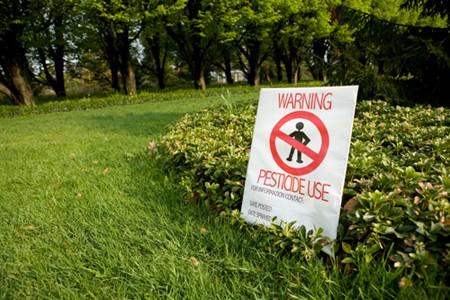 Bộ trưởng Pháp hứng đá vì lộ liễu bảo vệ thuốc trừ sâu - Ảnh 1.