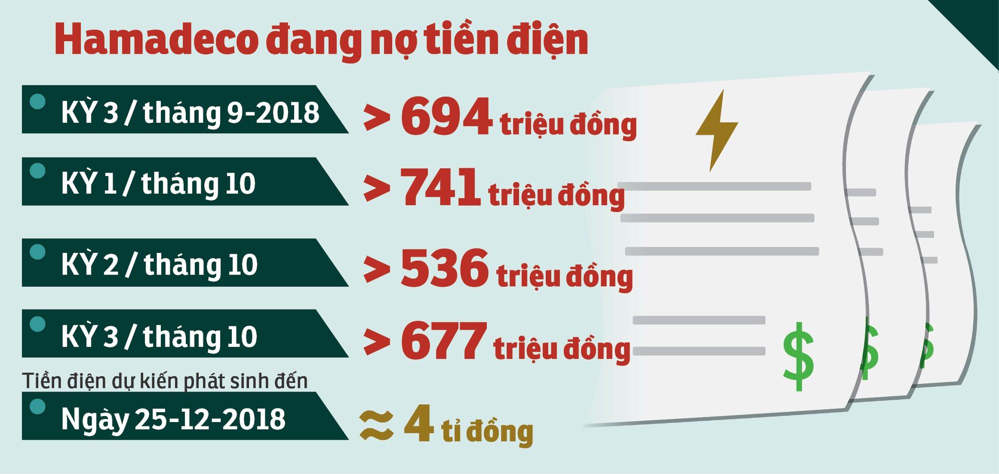 Nguy cơ đóng cửa hầm Hải Vân vì… hết tiền? - Ảnh 3.