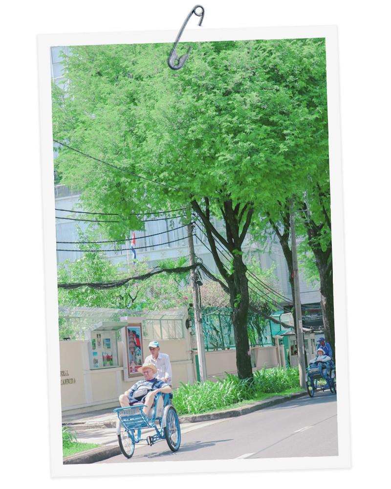 Những hàng me Sài Gòn - Ảnh 7.
