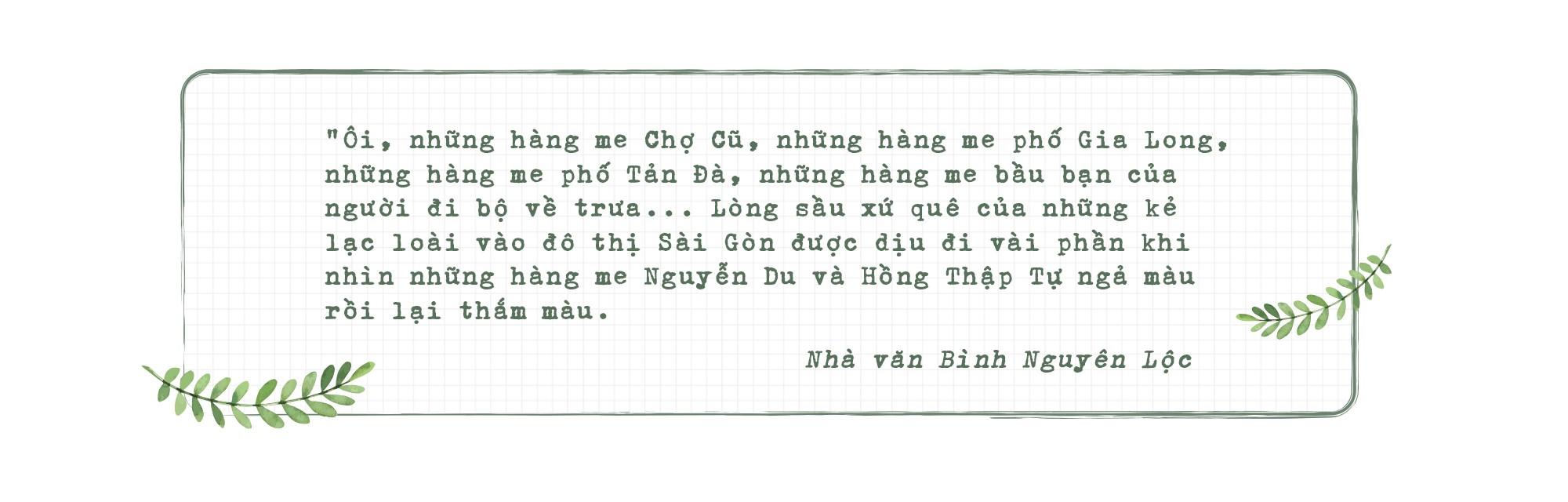Những hàng me Sài Gòn - Ảnh 9.