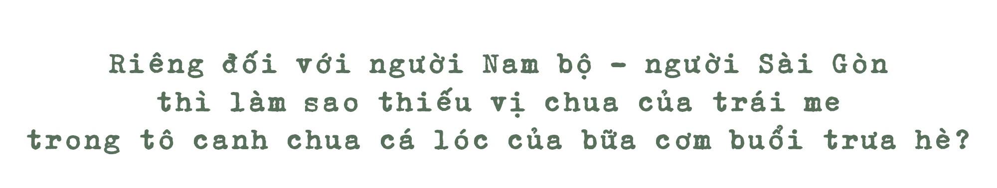 Những hàng me Sài Gòn - Ảnh 4.