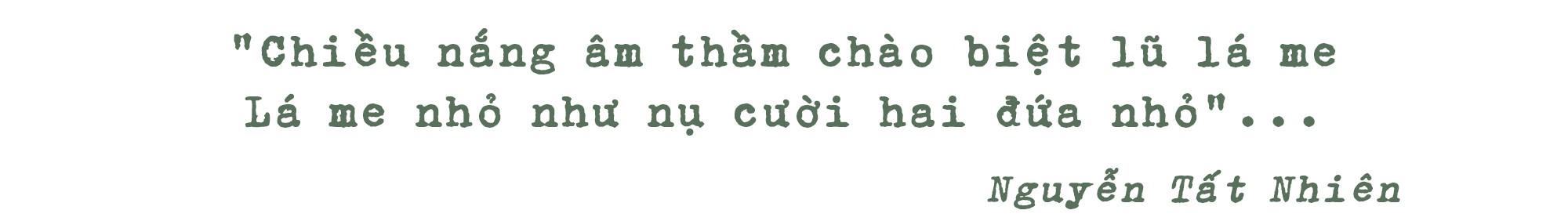 Những hàng me Sài Gòn - Ảnh 8.