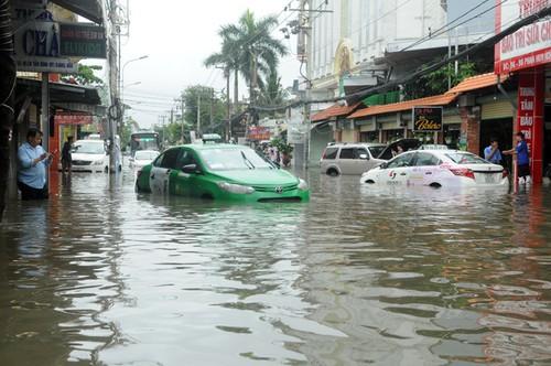 TP.HCM yêu cầu khẩn cấp giám sát rác thải sau bão - Ảnh 1.