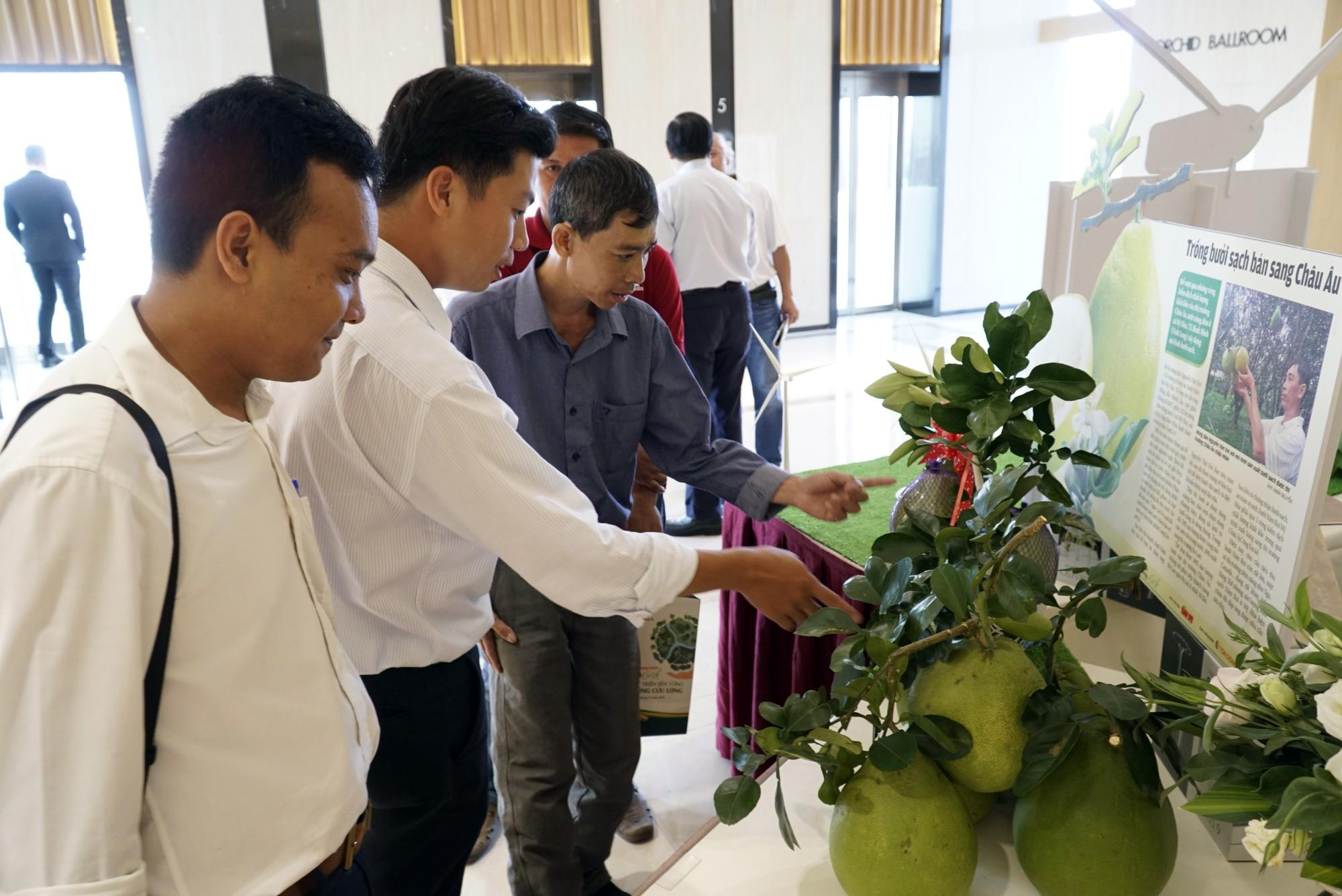 MeKong Xanh - Cùng xây cuộc sống xanh - Ảnh 10.