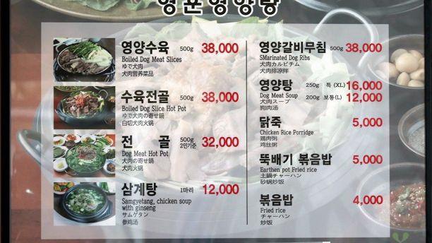 Olympic và chuyện bán thịt chó ở Hàn Quốc - Ảnh 2.