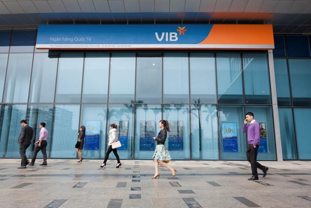 VIB tăng trưởng nhất trong 5 năm qua - Ảnh 1.