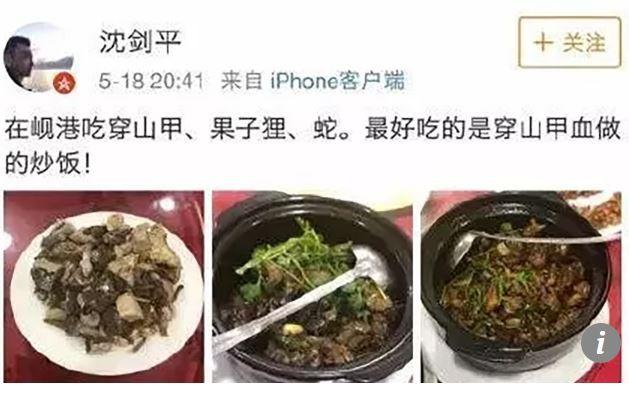 Khoe ảnh ăn tê tê ở Việt Nam, phó chủ tịch công ty Trung Quốc bay chức - Ảnh 1.