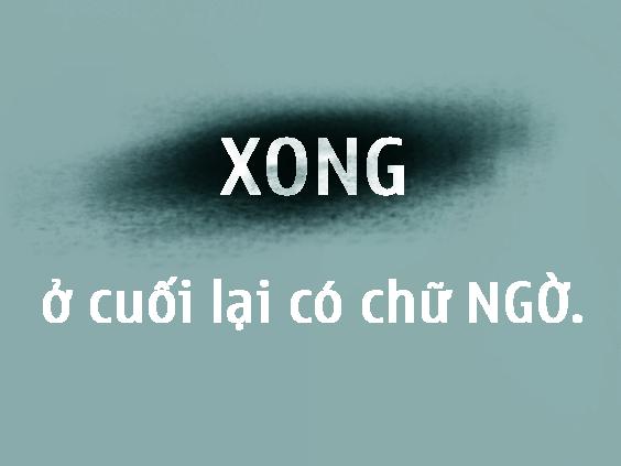 Bộ ảnh vui về... oái ăm tiếng Việt - Ảnh 6.