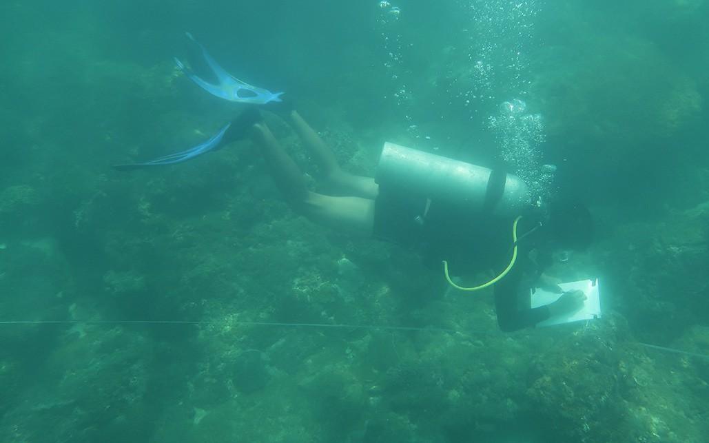 Nữ 'kiểm lâm' dưới đáy biển