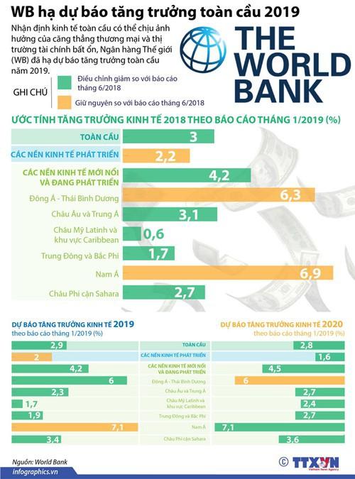 WB hạ dự báo tăng trưởng toàn cầu 2019 - Ảnh 1.
