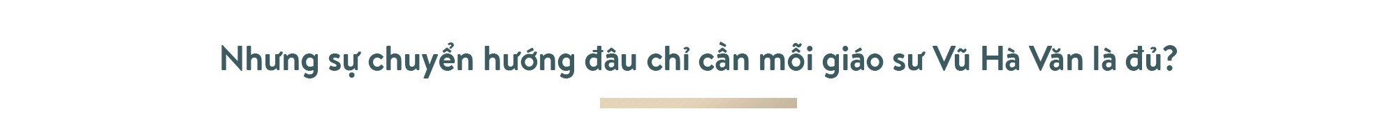 Ông Phạm Nhật Vượng: Thế giới phải biết Việt Nam trí tuệ, đẳng cấp - Ảnh 8.