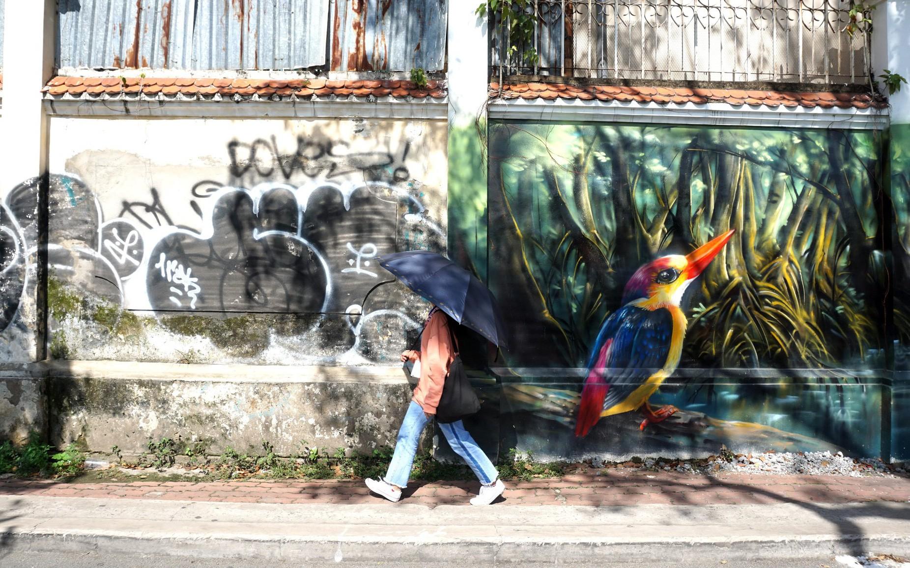 Bích họa 'cứu' những bức tường dơ ở TP.HCM