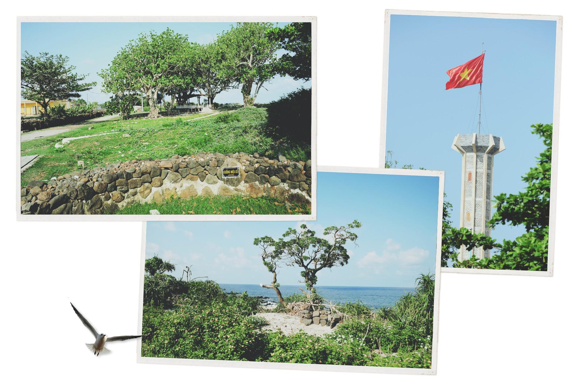 Cồn Cỏ - từ đảo thép thành đảo ngọc - Ảnh 8.