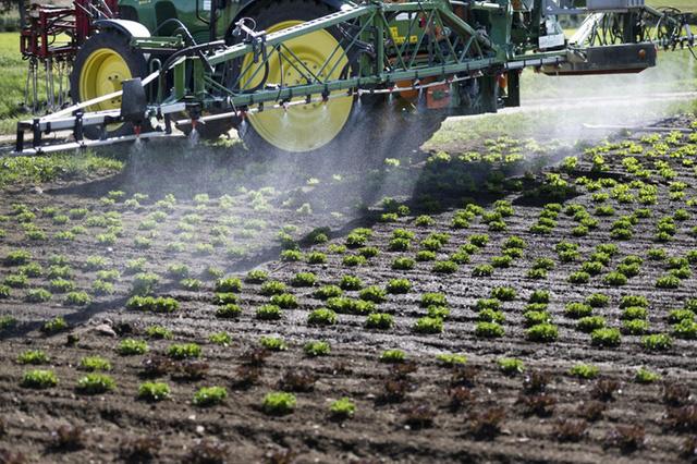 Thụy Sĩ cấm sử dụng thuốc trừ sâu chlorothalonil độc hại - Ảnh 1.
