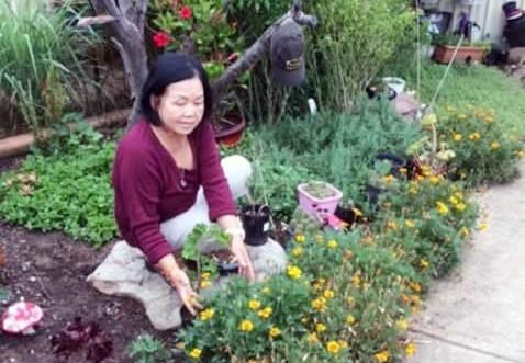 Tôi người Việt Nam, xin chỉ đường cho tôi về quê - Ảnh 1.