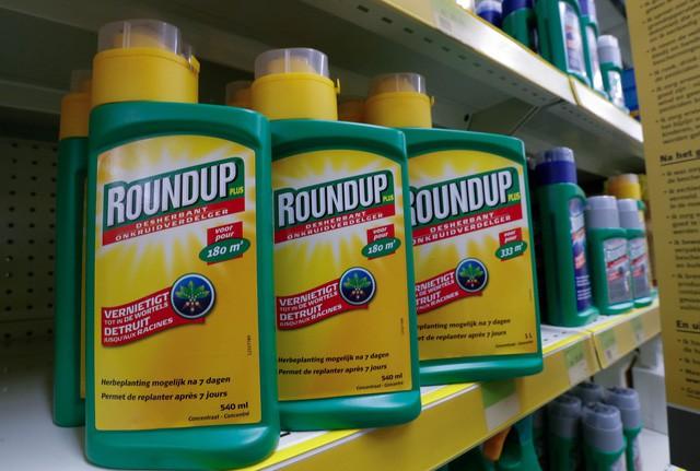 Việt Nam cấm nhập khẩu thuốc trừ cỏ có hoạt chất Glyphosate - Ảnh 1.