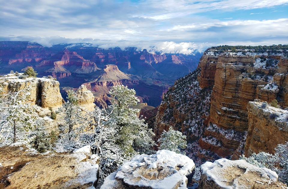 Kỳ quan Grand Canyon tráng lệ mùa tuyết rơi - Ảnh 5.