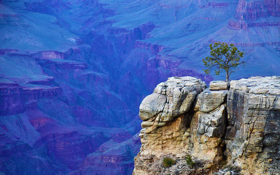 Kỳ quan Grand Canyon tráng lệ mùa tuyết rơi - Ảnh 2.
