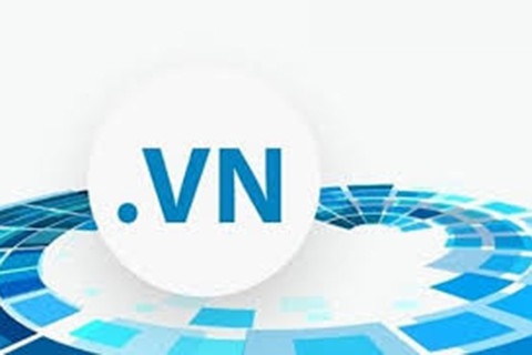 .VN liên tục là tên miền có số lượng đăng ký sử dụng cao nhất Đông Nam Á - Ảnh 1.