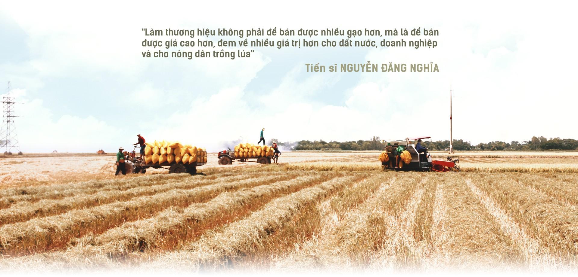 Hạt gạo Việt: 30 năm, một nỗi đau đáu về thương hiệu - Ảnh 7.