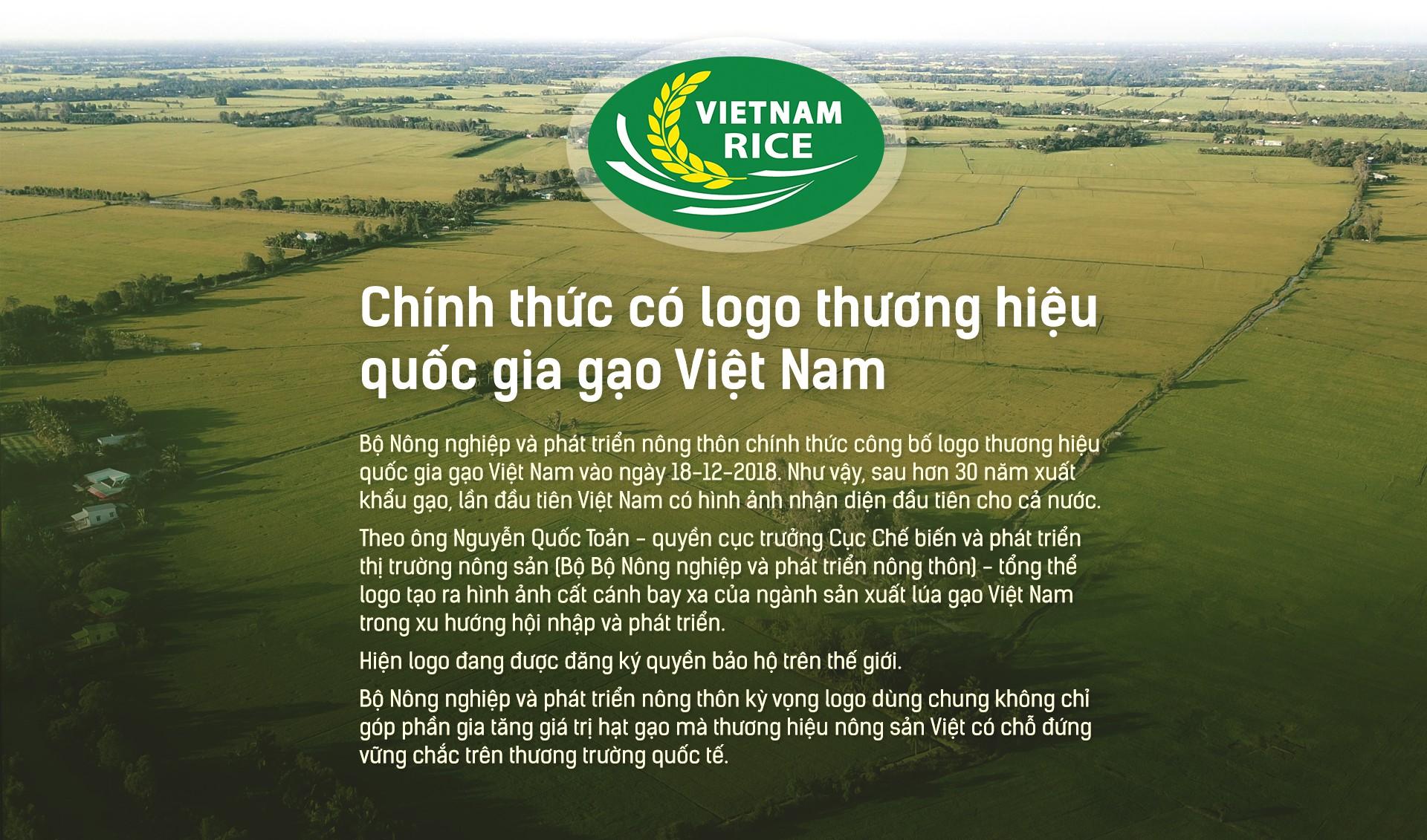 Hạt gạo Việt: 30 năm, một nỗi đau đáu về thương hiệu - Ảnh 14.