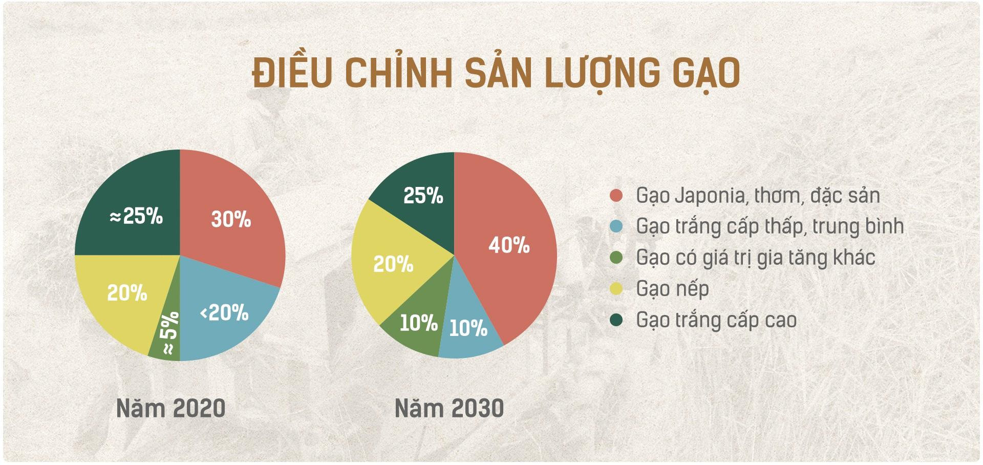 Hạt gạo Việt: 30 năm, một nỗi đau đáu về thương hiệu - Ảnh 6.