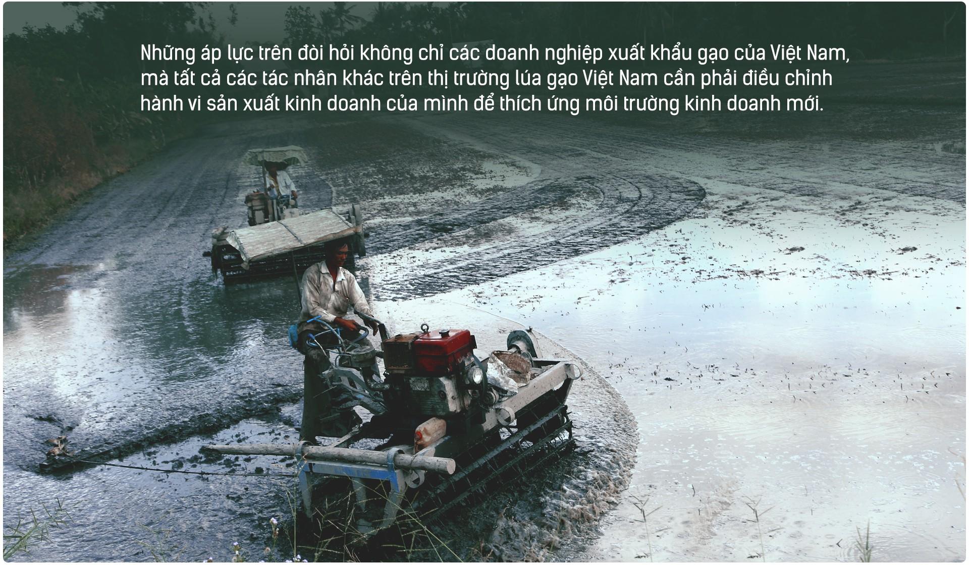 Hạt gạo Việt: 30 năm, một nỗi đau đáu về thương hiệu - Ảnh 12.