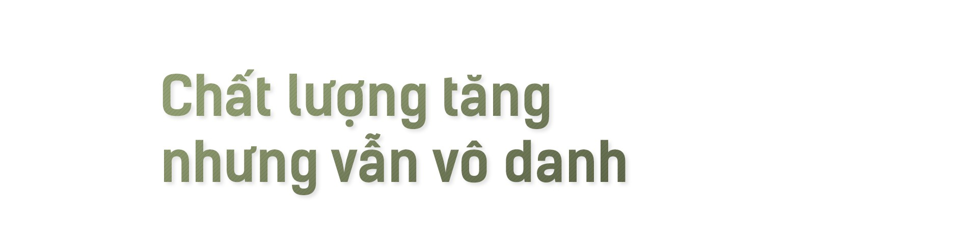 Hạt gạo Việt: 30 năm, một nỗi đau đáu về thương hiệu - Ảnh 1.